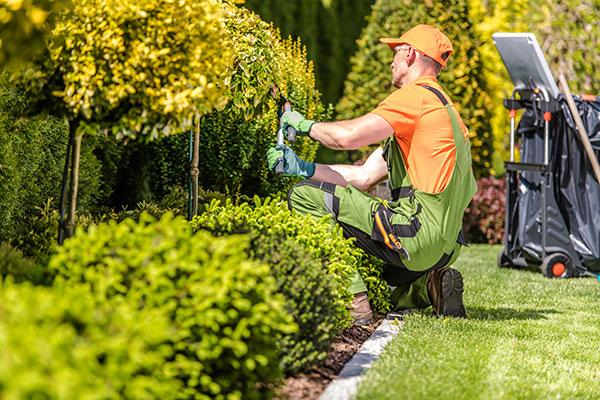 Landscape Contractors Insurance | Business Insurance Center
