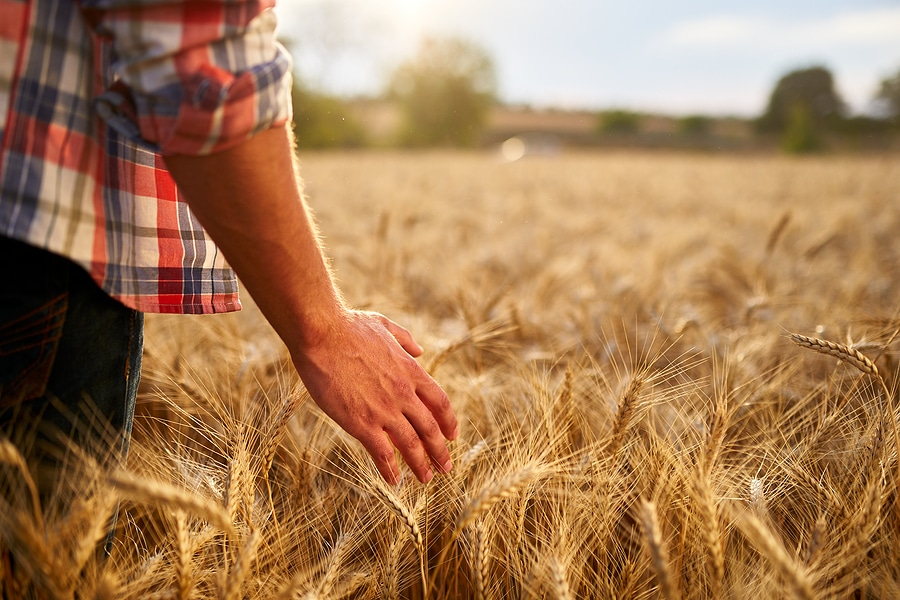 best agricultural insurance